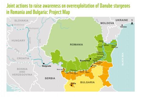 Карта на проекта