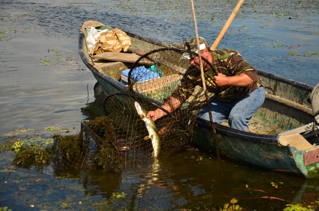 Pescaturism. Foto (c) Cristian Mititelu Raileanu